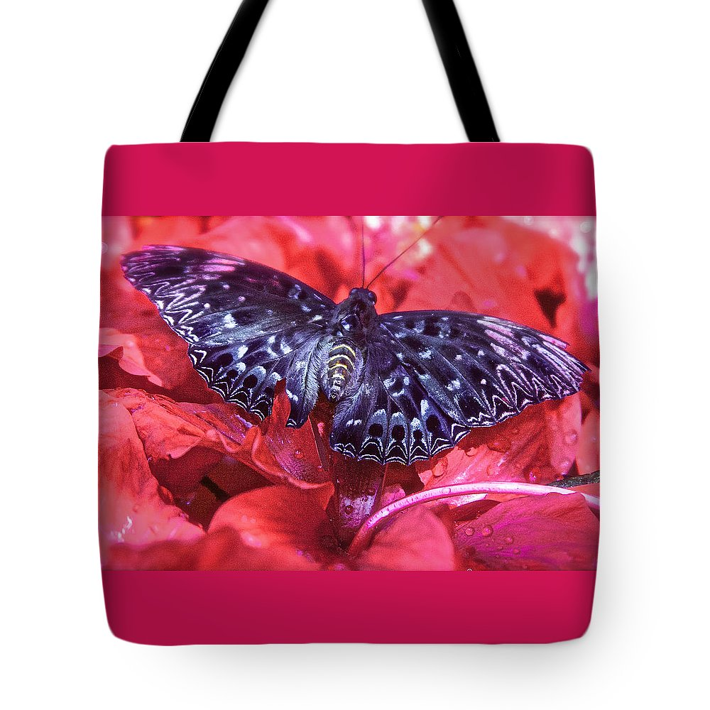 Constable Tote Bag featuring the photograph Butterfly Blues - Constable by Venetia Featherstone-Witty