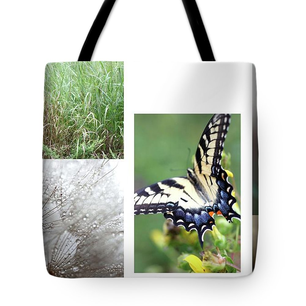 Nature Tote Bag featuring the photograph Butterfly Collage by AR Annahita