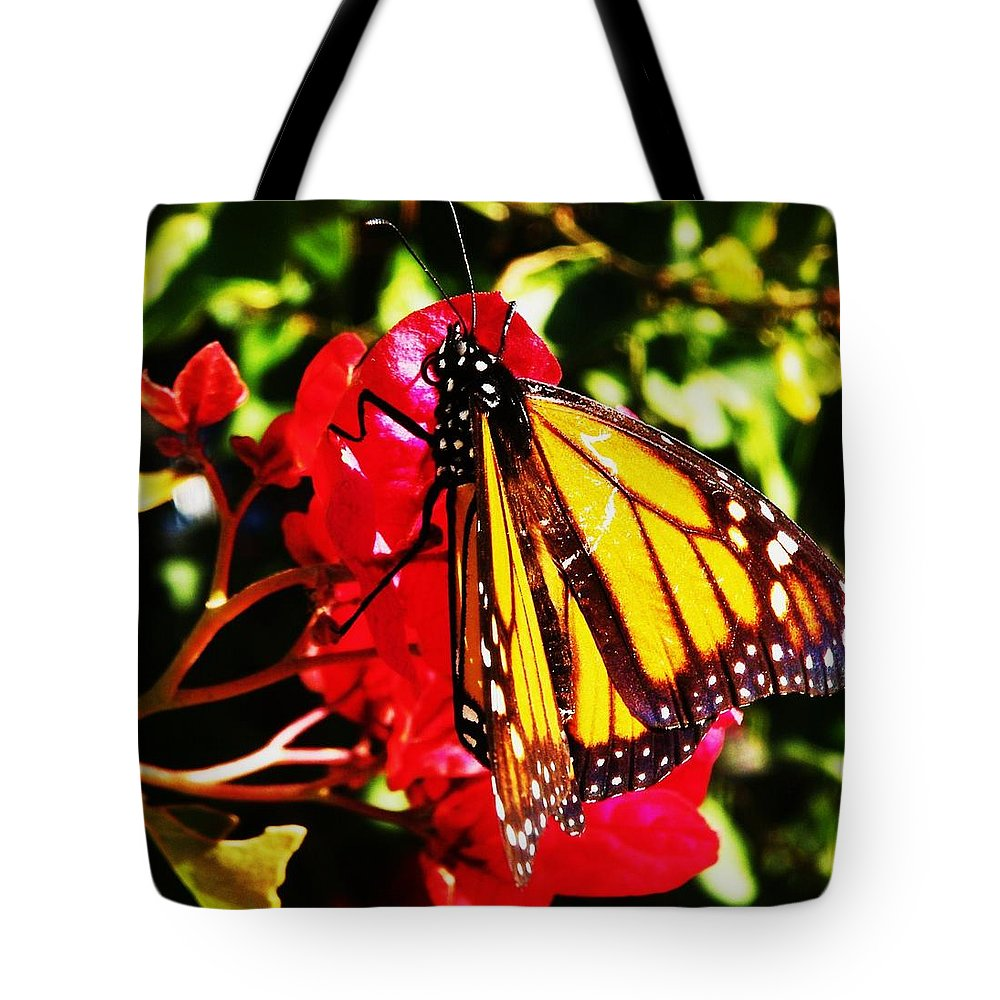 Butterflies Tote Bag featuring the photograph Butterfly On Bougainvillea by Daniele Smith