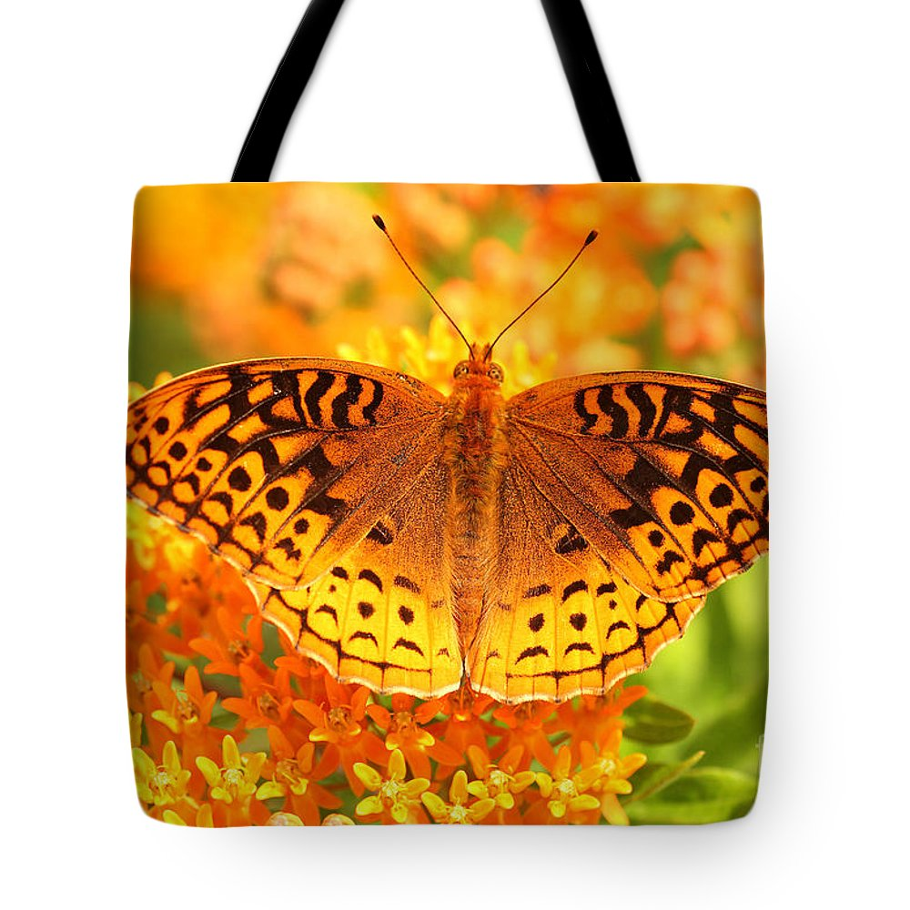 Great Spangled Fritillary Tote Bag featuring the photograph Butterfly On Butterfly Weed by Doris Dumrauf