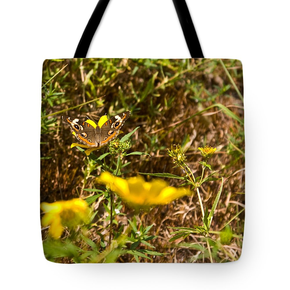 Butterfly Tote Bag featuring the photograph Butterfly On Flower by Douglas Barnett