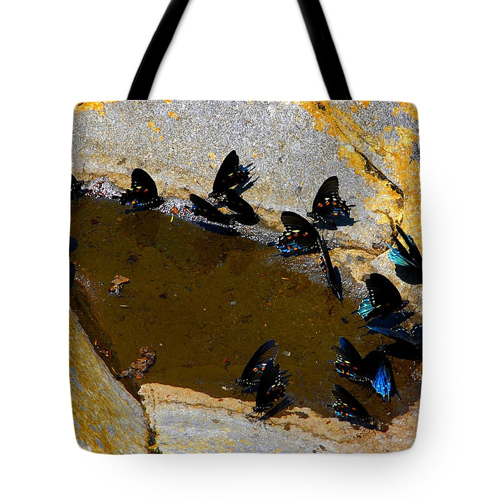 Butterflies Tote Bag featuring the photograph Butterfly Pool by David Lee Thompson