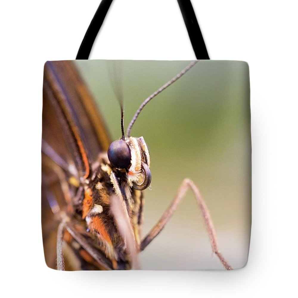 Butterfly Tote Bag featuring the photograph Butterfly Tongue by Steven Jones
