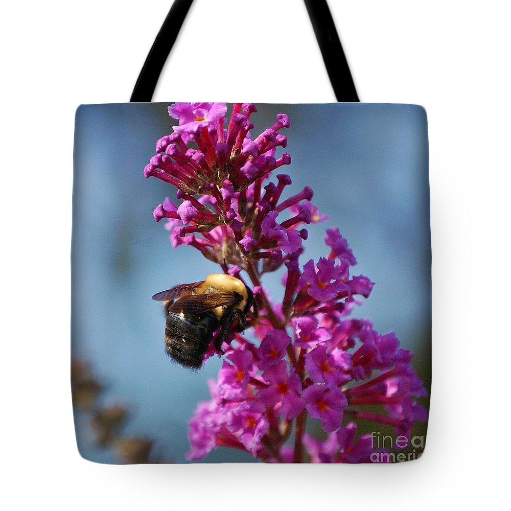 Bee Tote Bag featuring the photograph Buzzed by Debbi Granruth