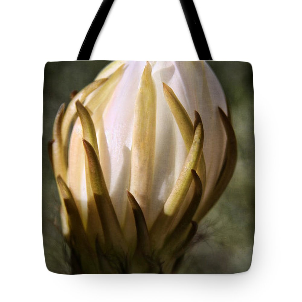 Cactus Bloom Tote Bag featuring the photograph Buzzz by Tammy Espino