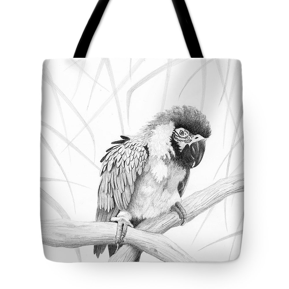Parrot Tote Bag featuring the drawing Bw Parrot by Phyllis Howard