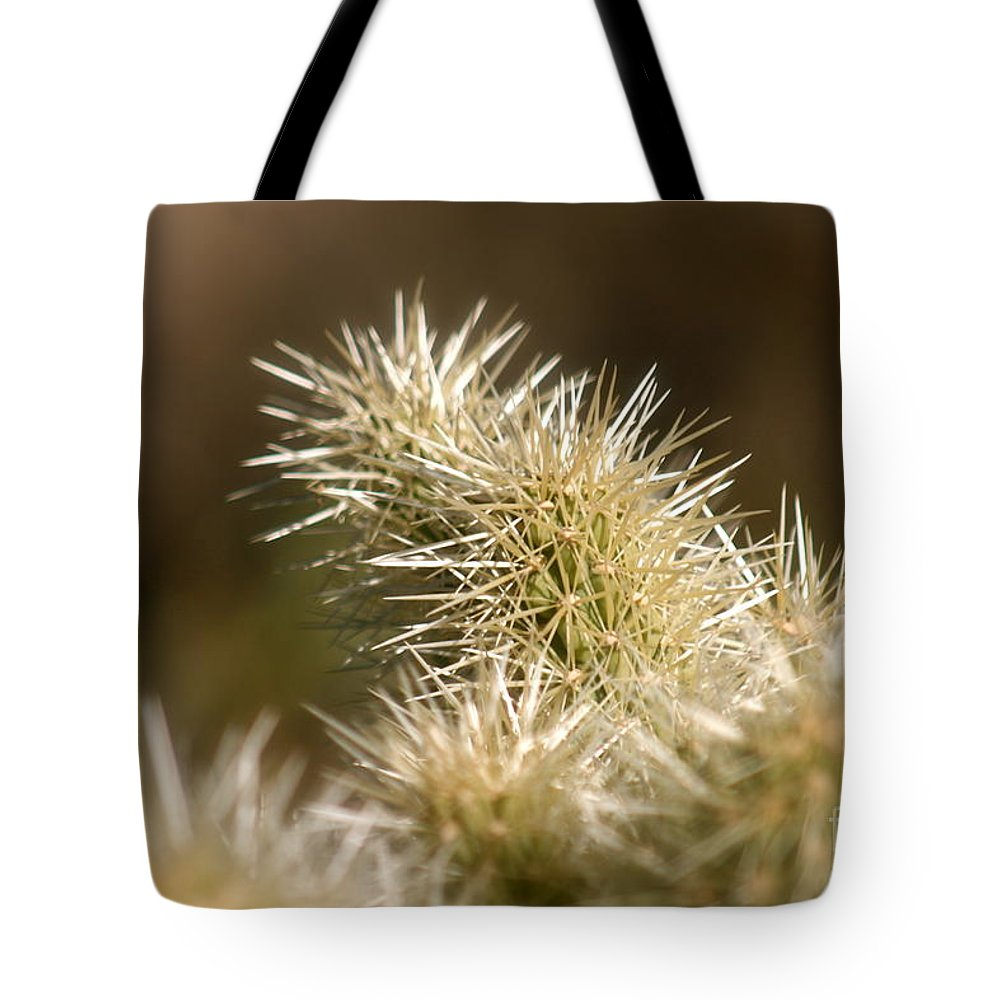 Cactus Tote Bag featuring the photograph Cacti by Nadine Rippelmeyer