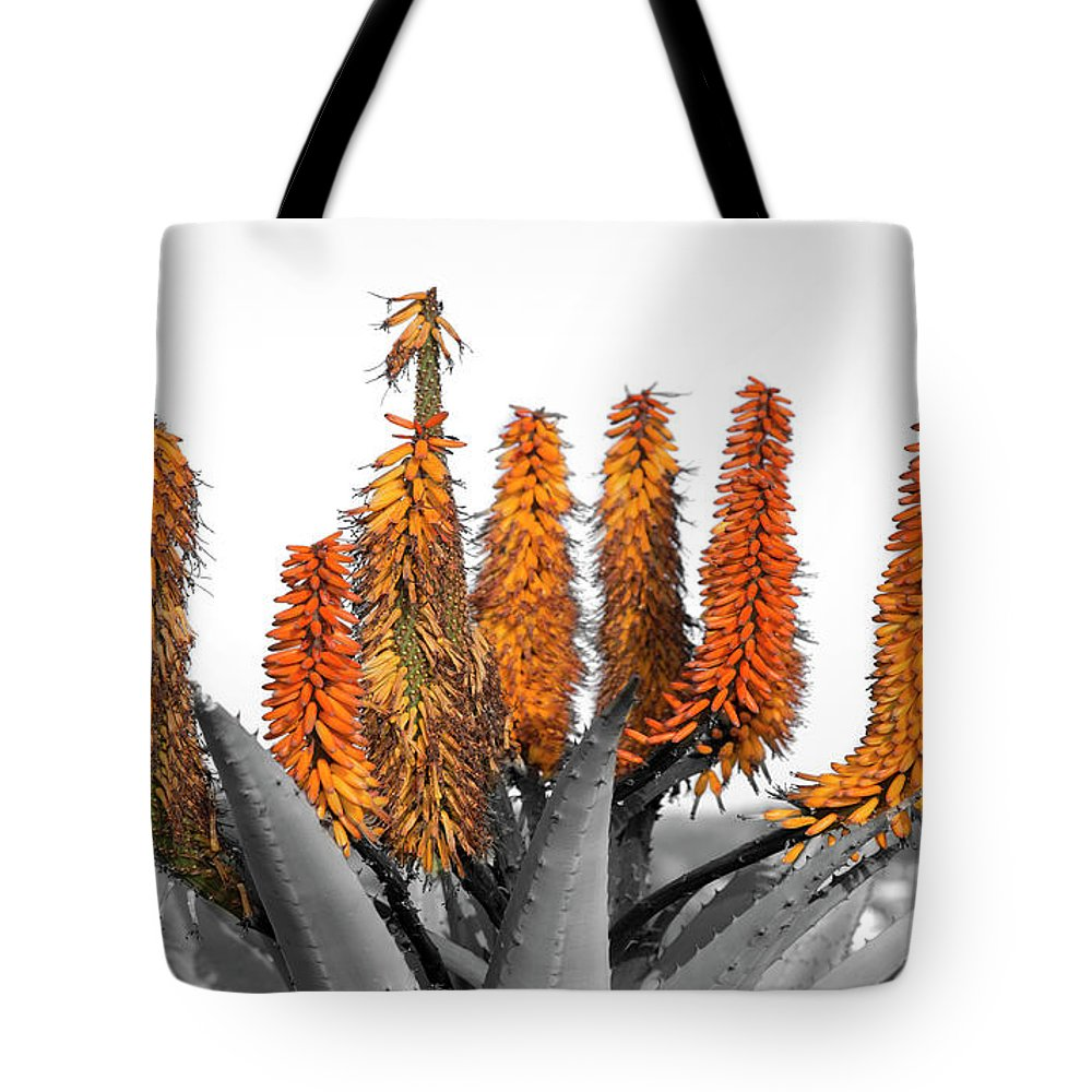 Summer Tote Bag featuring the digital art Cactus 5 by Mark Ashkenazi