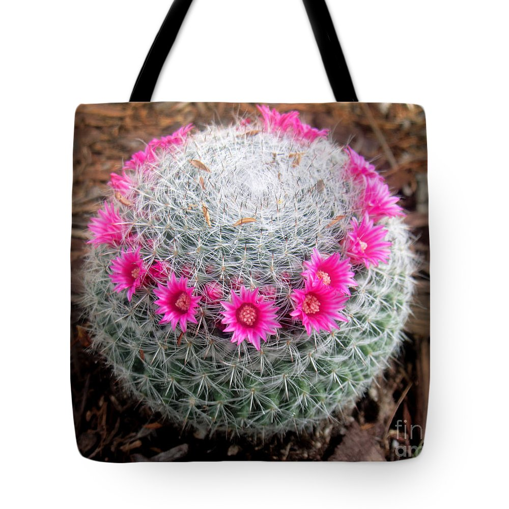 Cactus Ball With Pink Flowers Tote Bag For Sale By Sofia Metal Queen