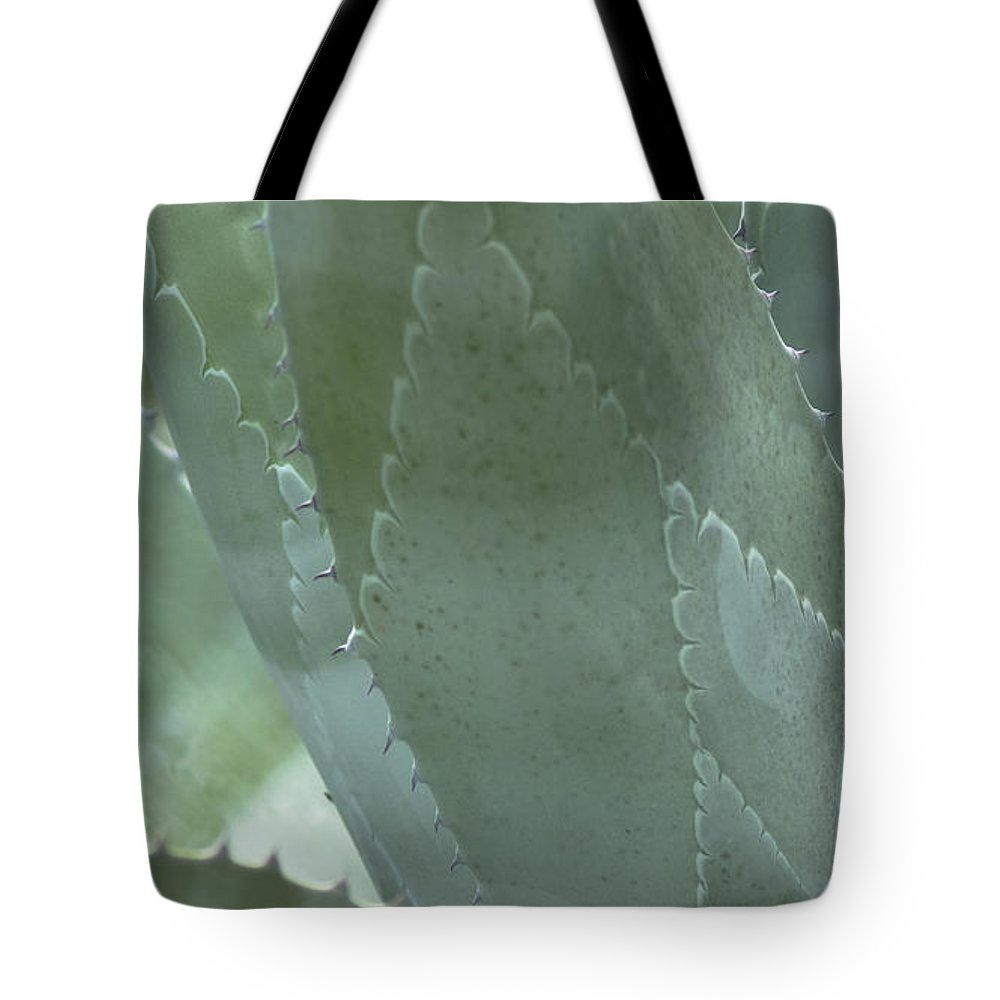 Nature Tote Bag featuring the photograph Cactus by Billy Stovall
