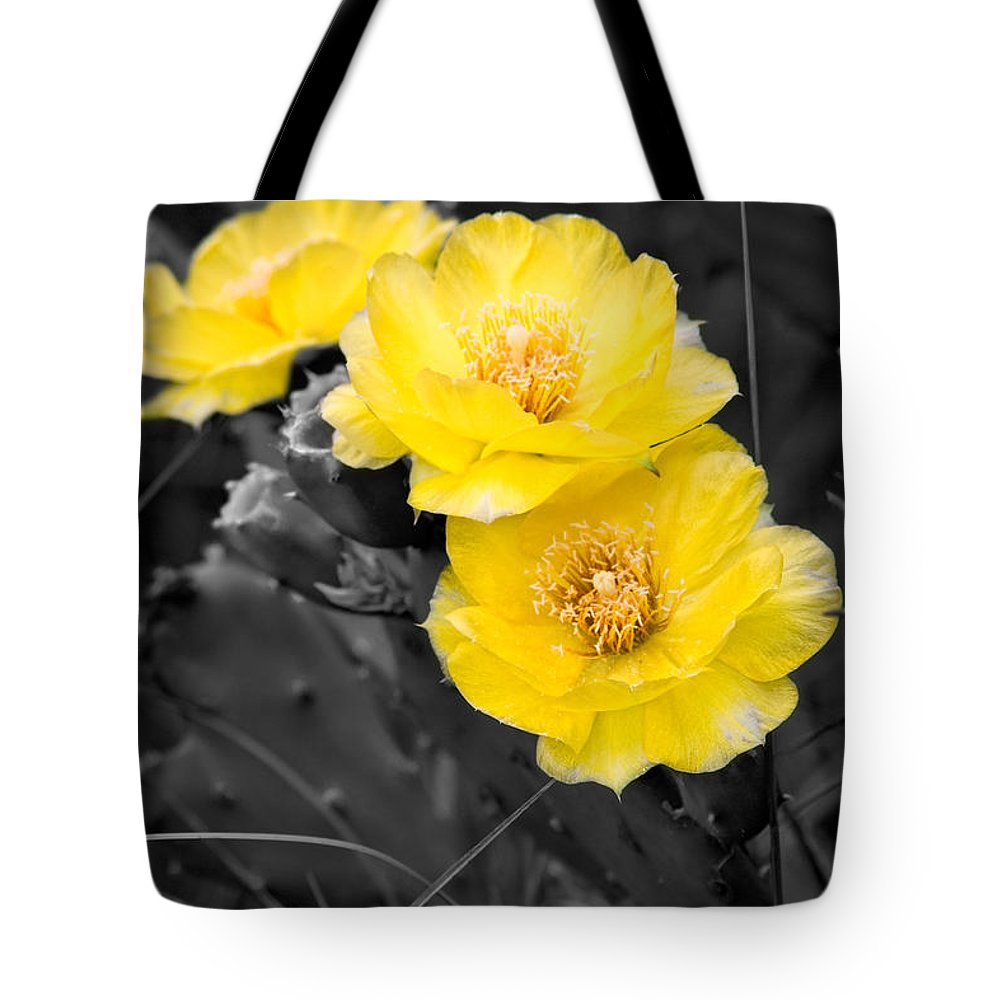 Cactus Tote Bag featuring the photograph Cactus Blossom by Christopher Holmes