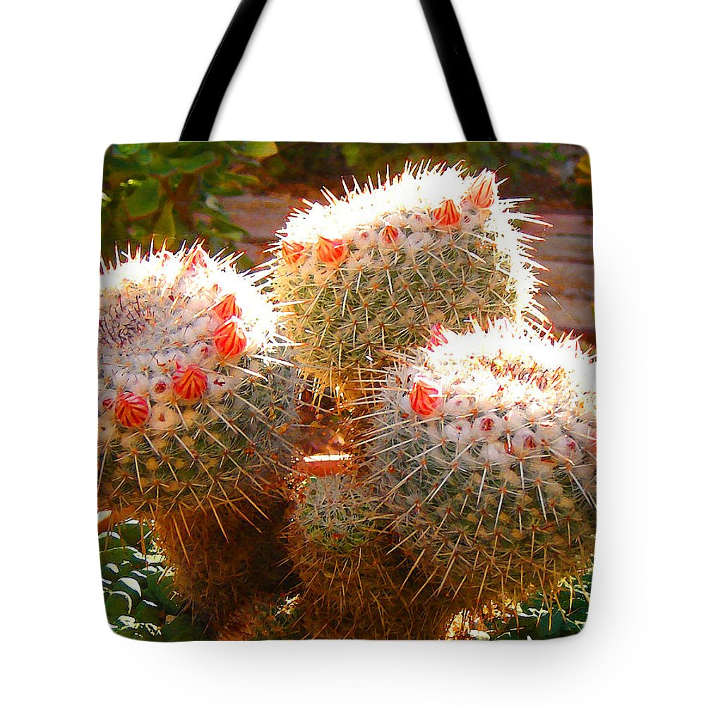 Landscape Tote Bag featuring the photograph Cactus Buds by Amy Vangsgard