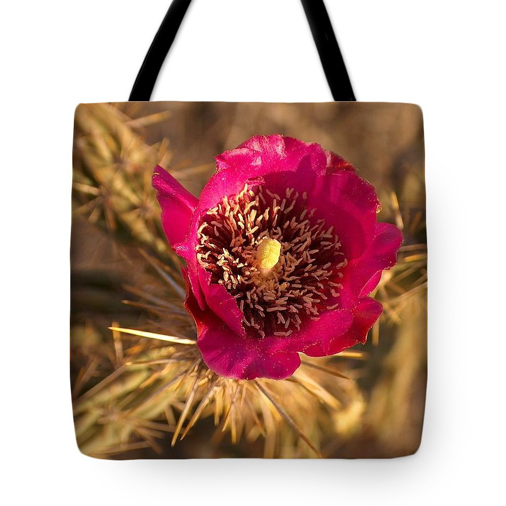 Cactus Flowers Wildflowers Tote Bag featuring the photograph Cactus Flower 1 by Tim McCarthy