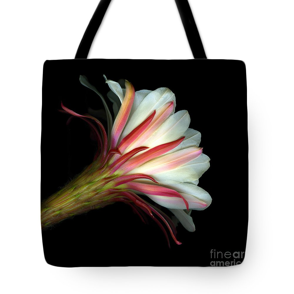 Scanart Tote Bag featuring the photograph Cactus Flower by Christian Slanec