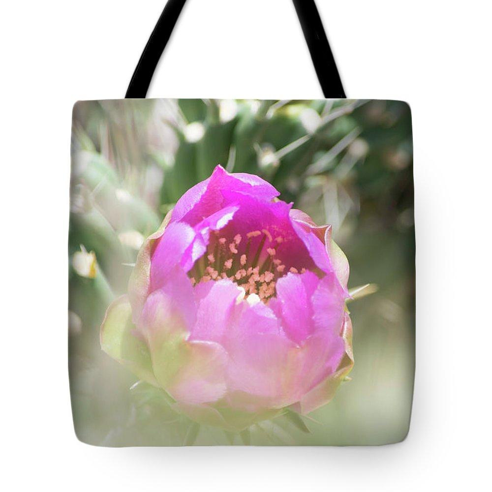 Cactus Tote Bag featuring the photograph Cactus Flower by Deborah Reinhardt - Adams
