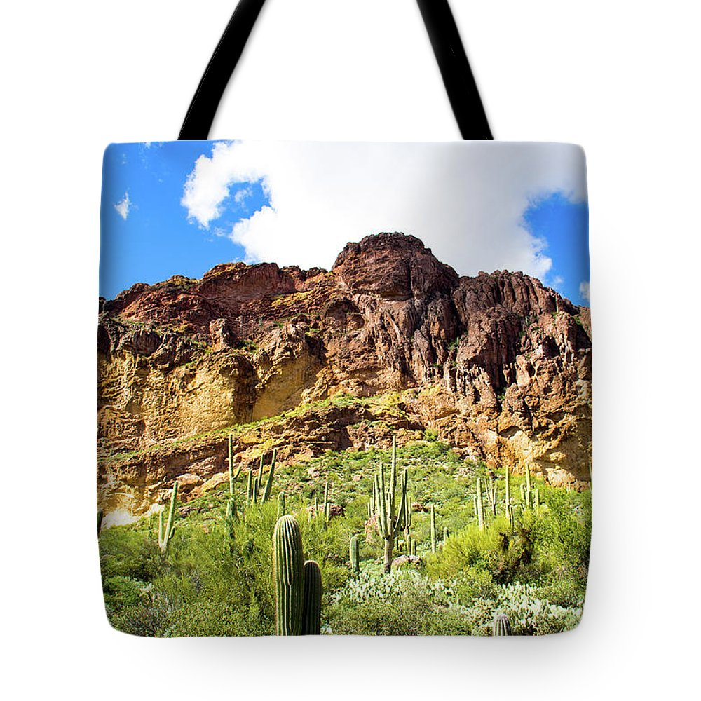 Cactus Tote Bag featuring the photograph Cactus On The Mountainside by Amy Sorvillo