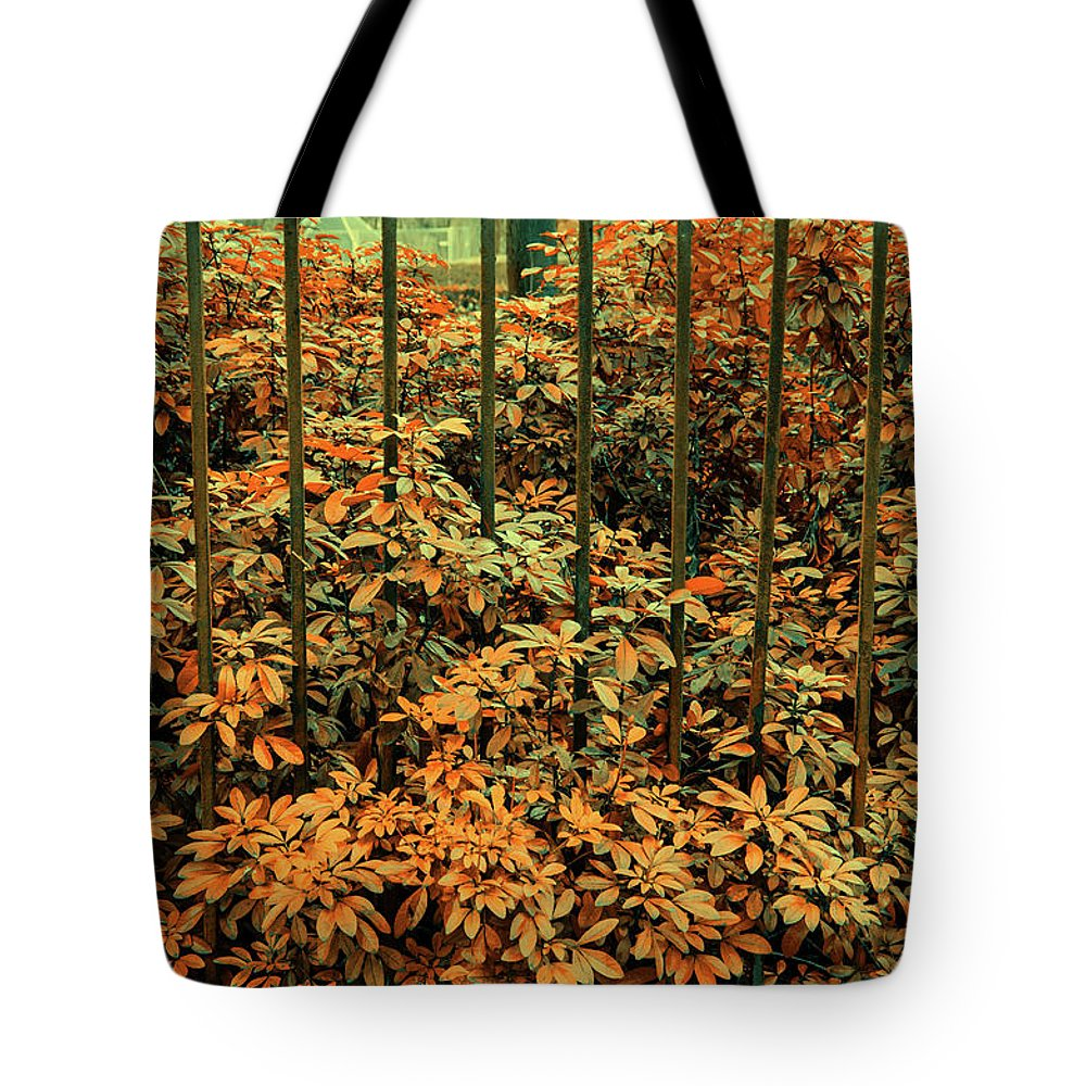 Phtography Tote Bag featuring the photograph Caged by Santiago Arcusa