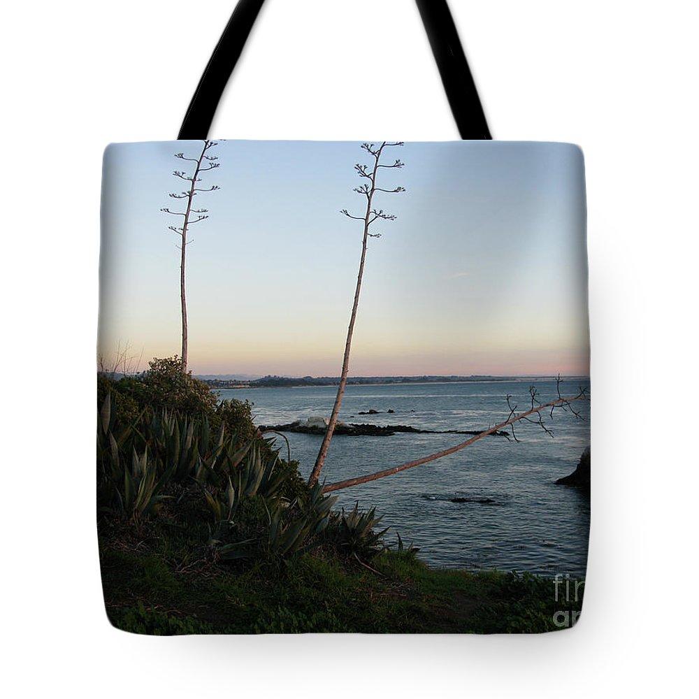 California Tote Bag featuring the photograph California At Twilight by Mini Arora