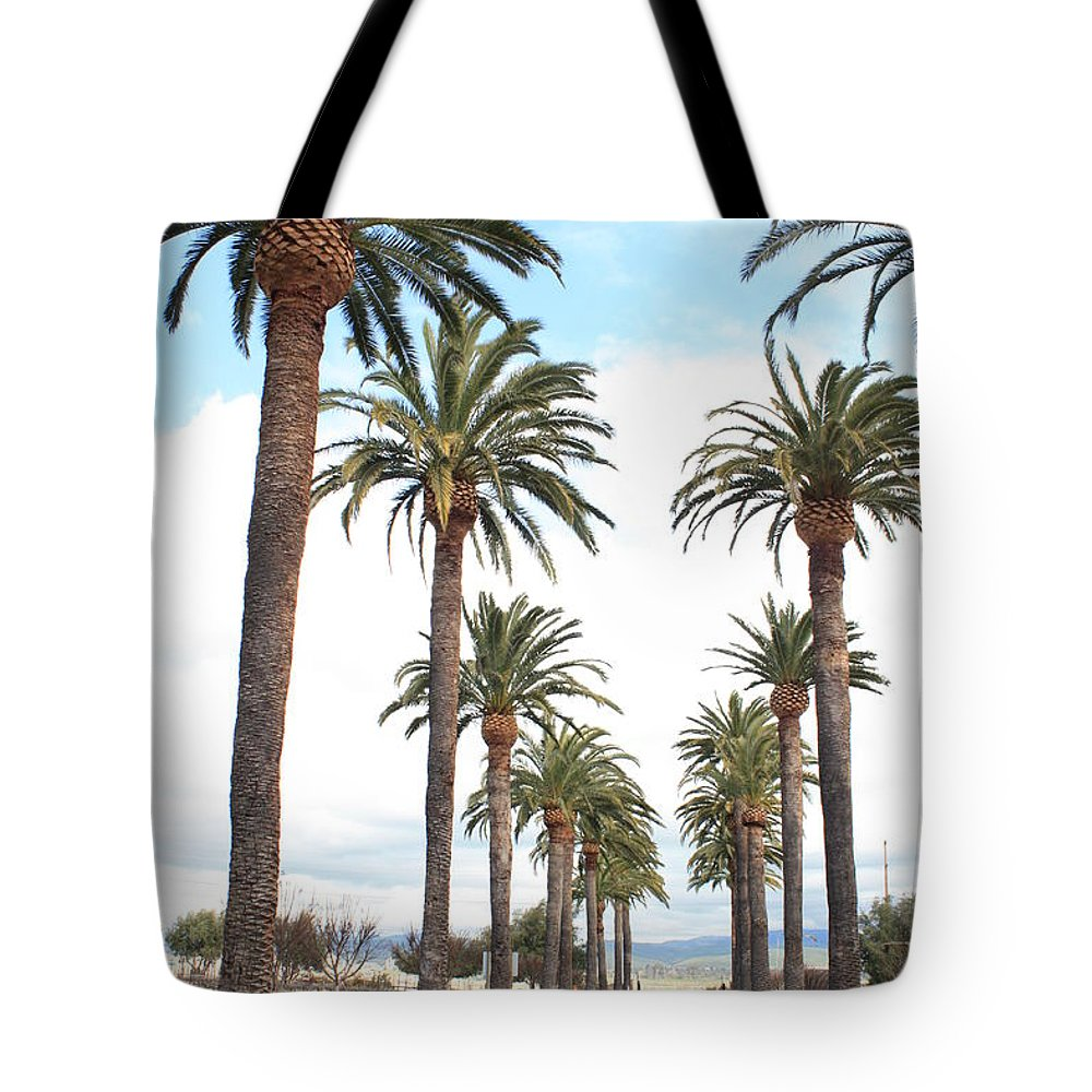 Palm Trees Tote Bag featuring the photograph California Dreaming by Carol Groenen