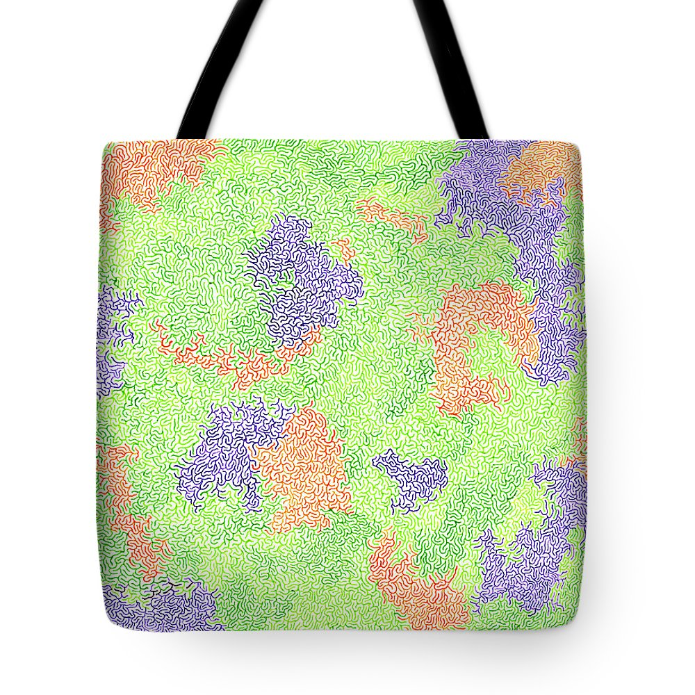 Mazes Tote Bag featuring the drawing California Poppies by Steven Natanson