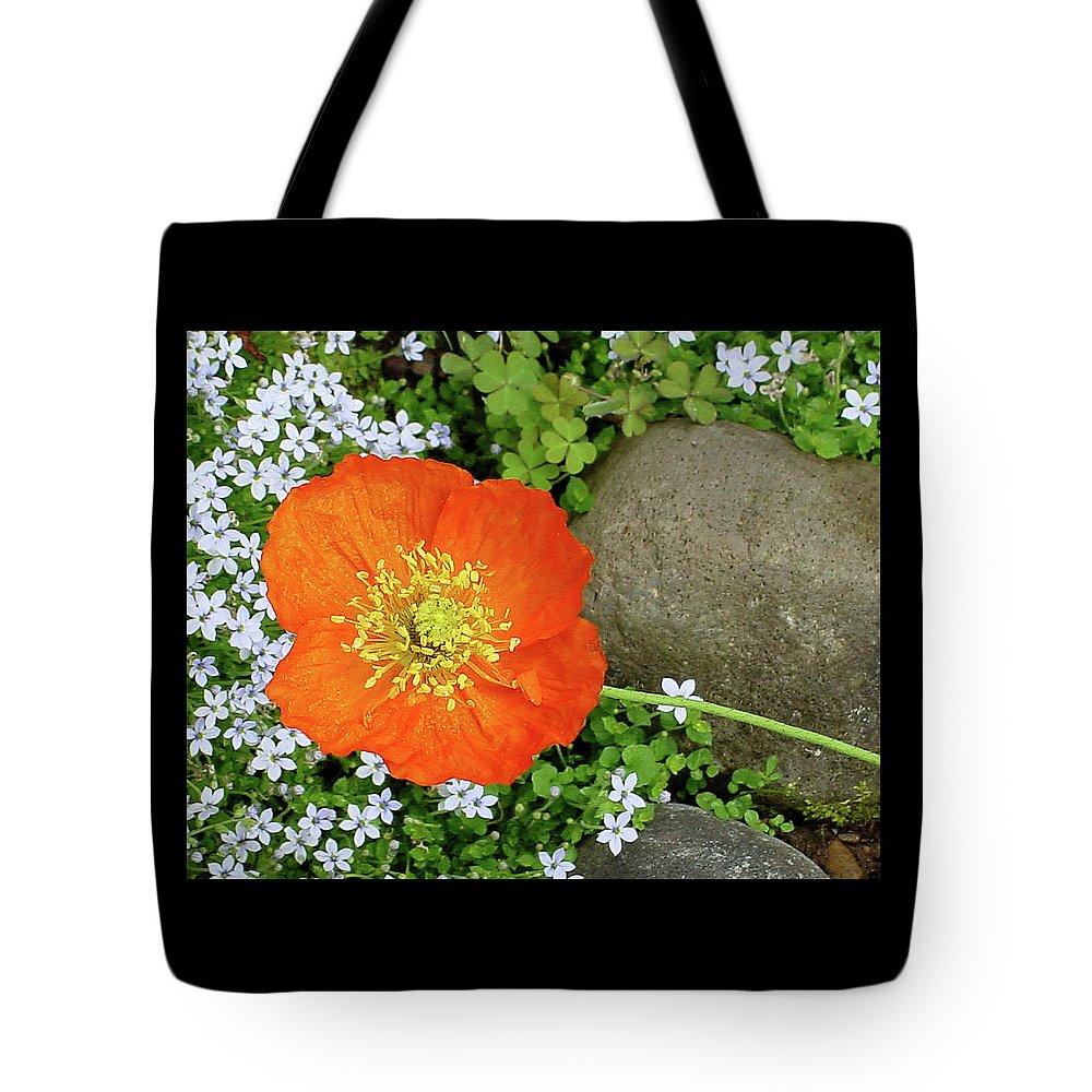 Star Tote Bag featuring the photograph California Poppy Rock Garden by Shirley Heyn