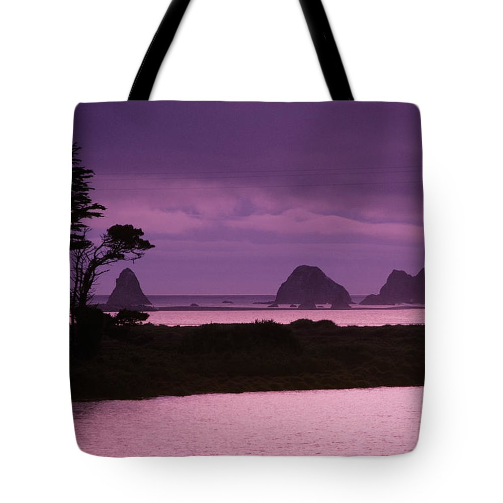 Beach Tote Bag featuring the photograph California, Sonoma Coast by Larry Dale Gordon - Printscapes