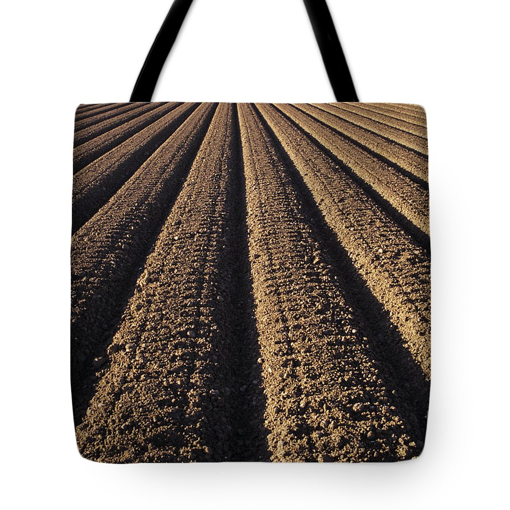 Agriculture Tote Bag featuring the photograph Califronia, View by Larry Dale Gordon - Printscapes