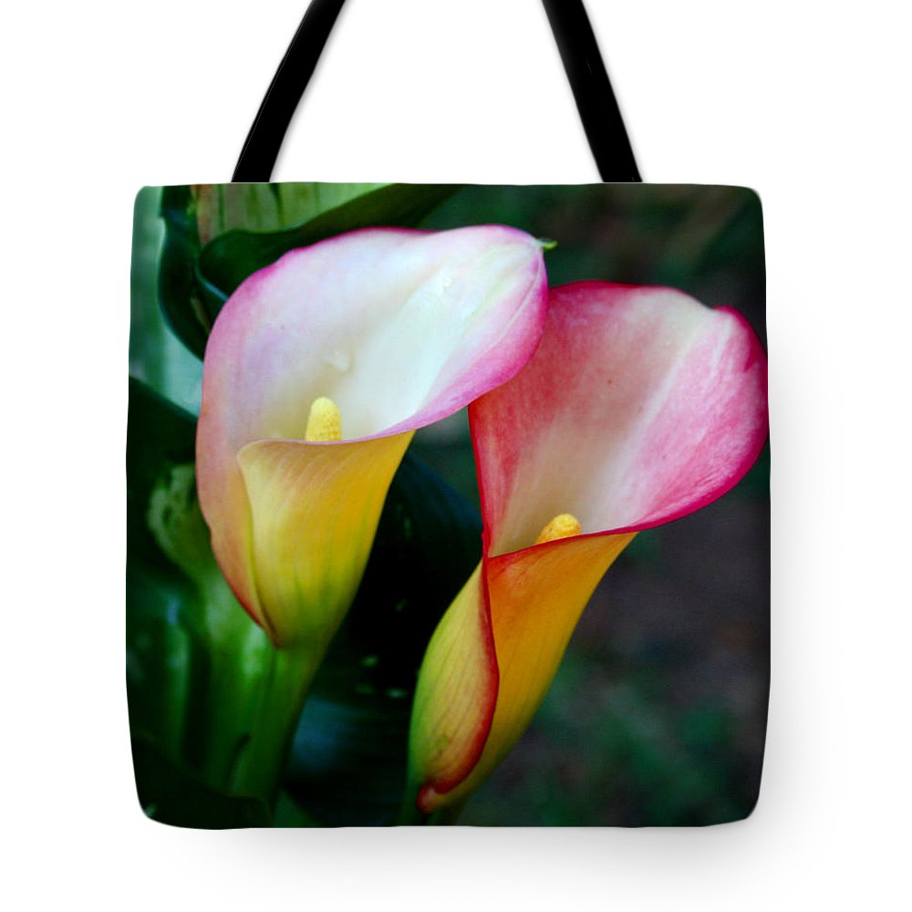Calla Lily Tote Bag featuring the photograph Calla Lily Twins by Paul Anderson