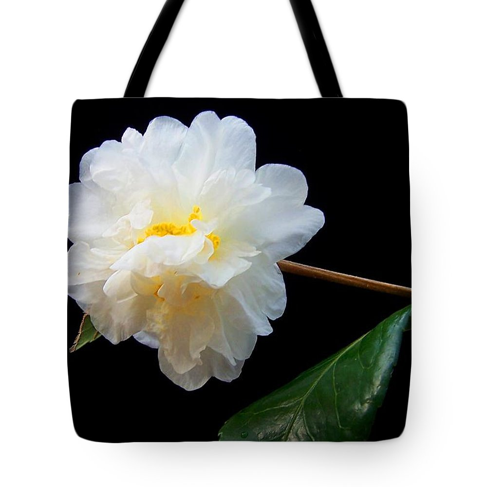 Camelia Tote Bag featuring the photograph Camelia Trio by Laurie Paci