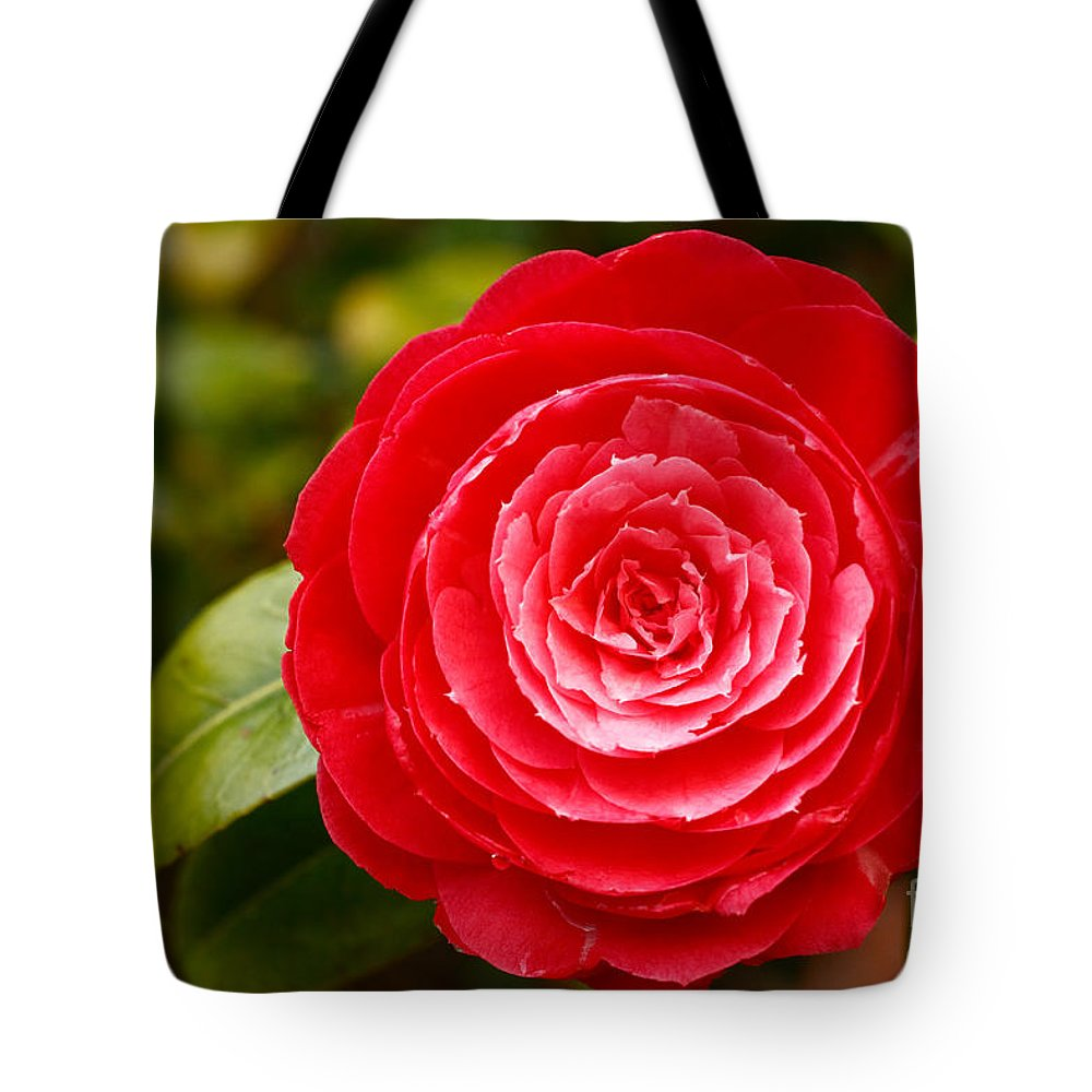 Azores Tote Bag featuring the photograph Camellia Japonica by Gaspar Avila