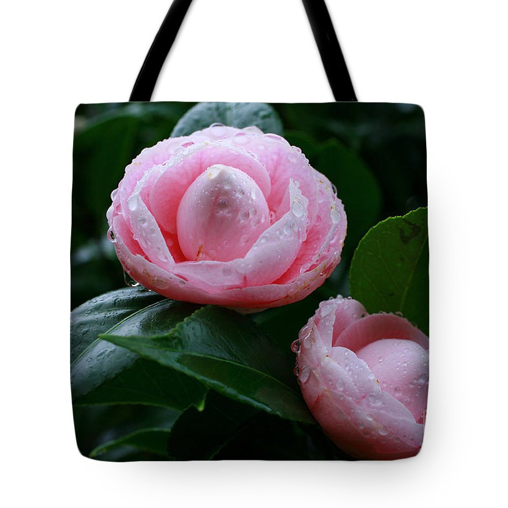 Bloom Tote Bag featuring the photograph Camellias by Gaspar Avila