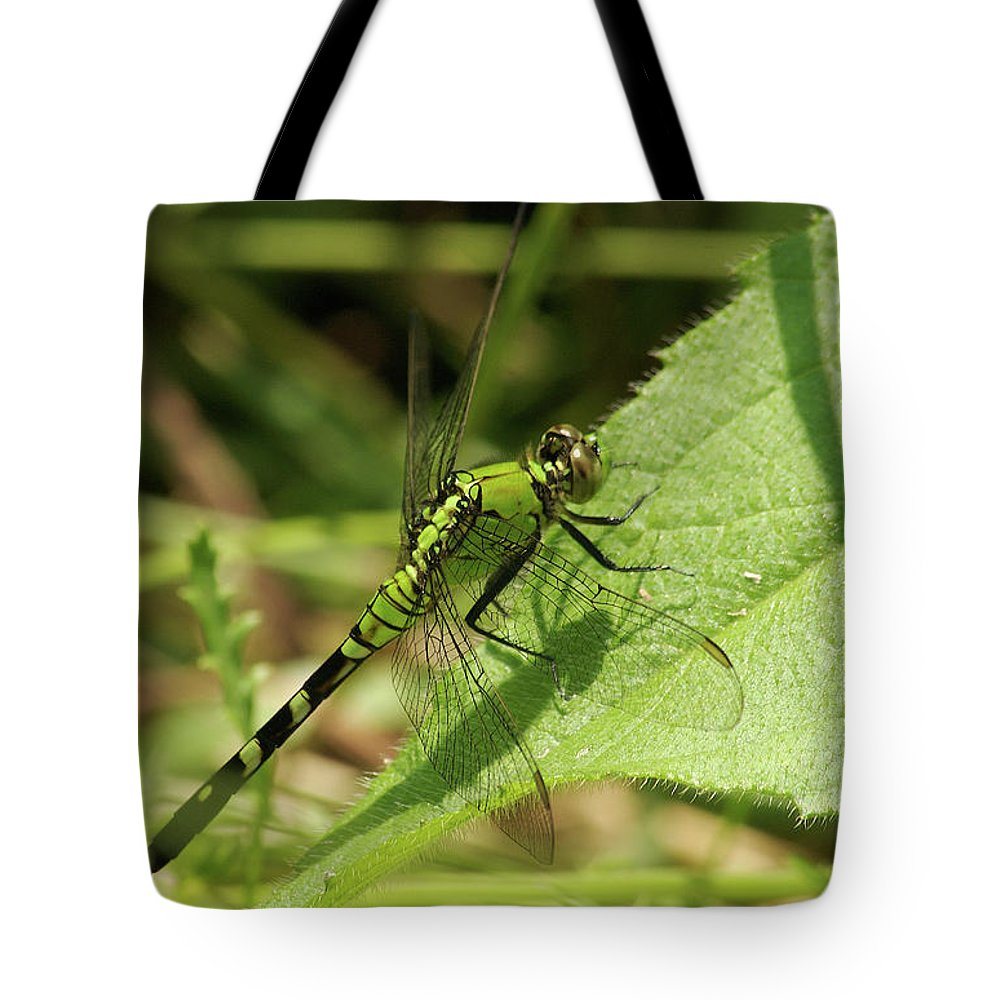 Cameo Green Dragonfly Tote Bag featuring the photograph Cameo Green Dragonfly by Michael Peychich