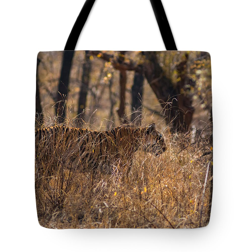 Animal Tote Bag featuring the photograph Camouflage by Ramabhadran Thirupattur