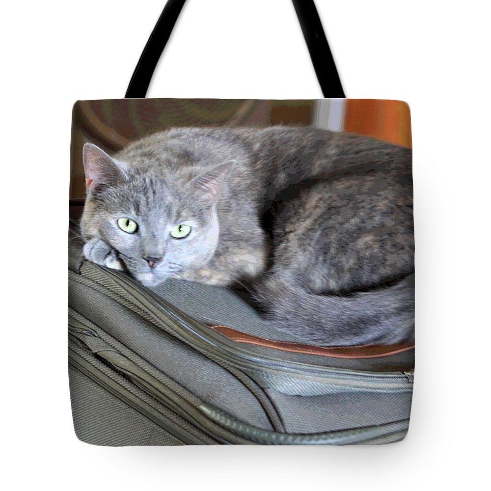 Cat Tote Bag featuring the photograph Can I Come With You by Suzanne Gaff