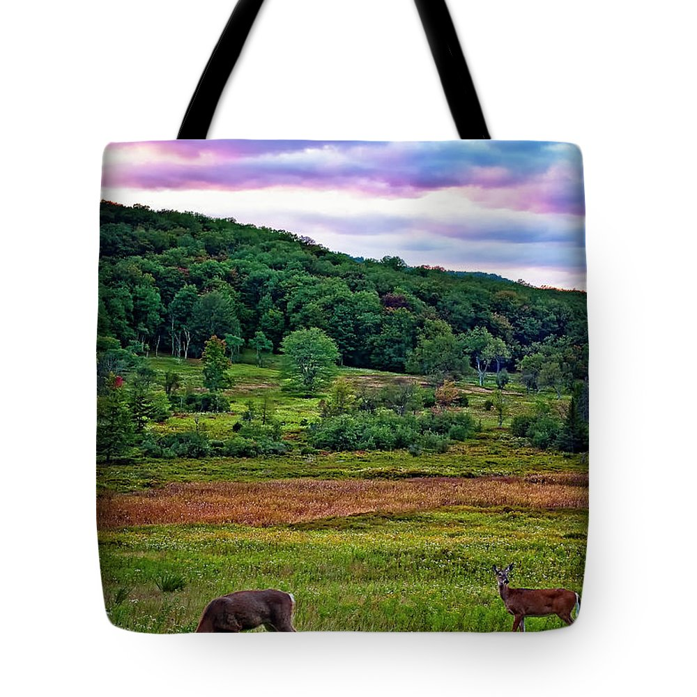 West Virginia Tote Bag featuring the photograph Canaan Valley Evening by Steve Harrington