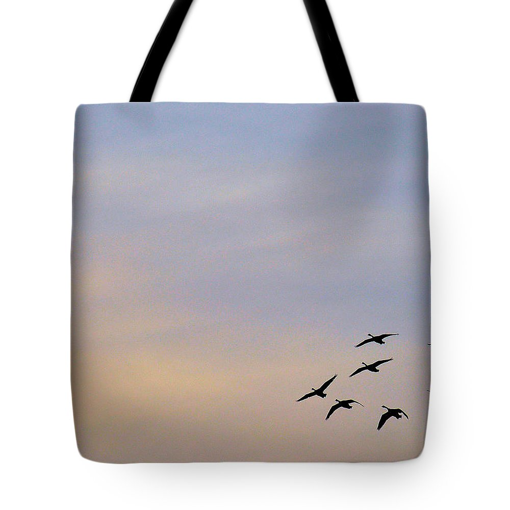 Bird Tote Bag featuring the photograph Canada Geese Take Flight by Rich Bodane