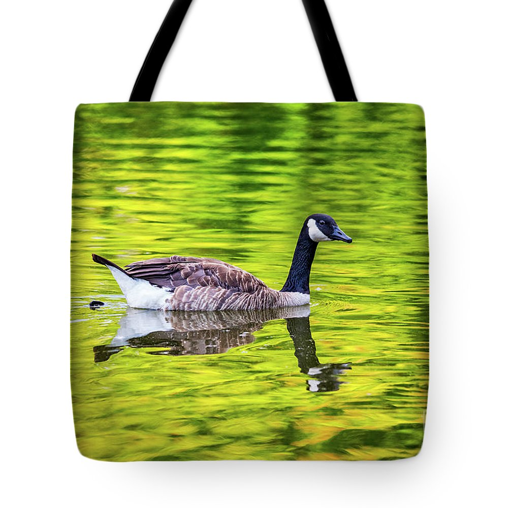 Animals Tote Bag featuring the photograph Canada Goose Swimming In A Pond by Leslie Banks