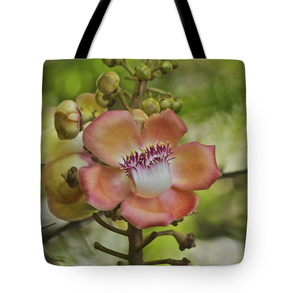 Flower Tote Bag featuring the photograph Cannonball Blossom by Michael Peychich