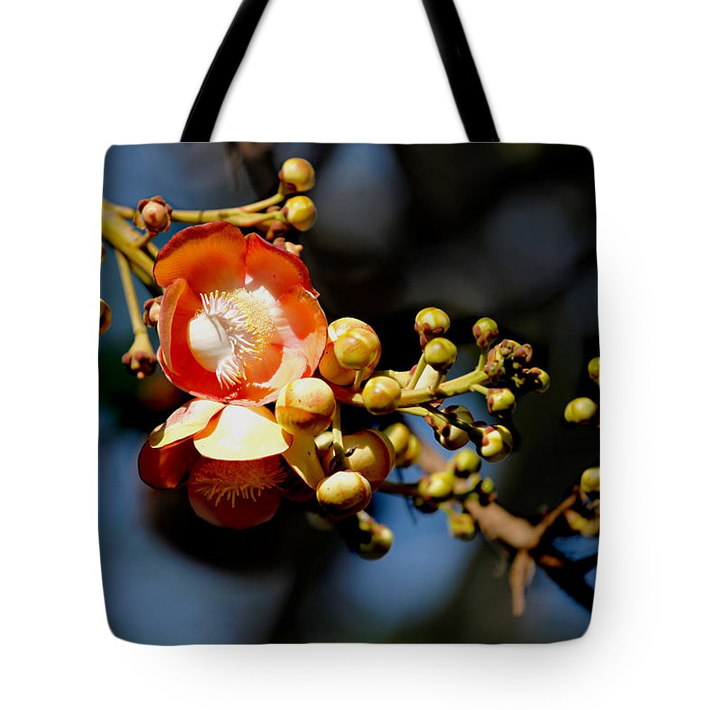 Cannoball Tote Bag featuring the photograph Cannonball Flower by Sujith Gopinath