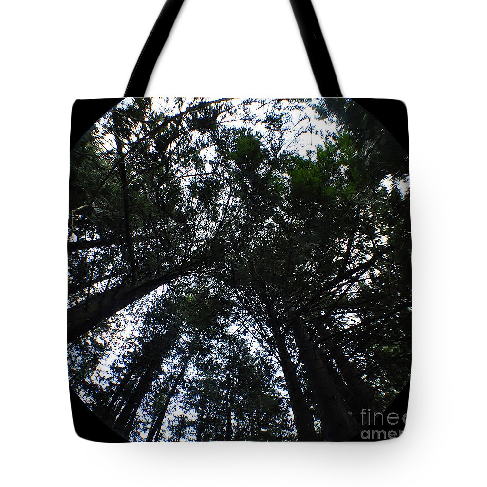 Clay Tote Bag featuring the photograph Canopy by Clayton Bruster
