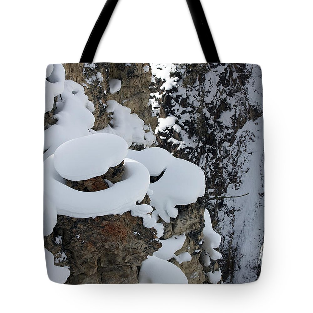 Landscape Tote Bag featuring the photograph Canyon Ledge by Mary Haber
