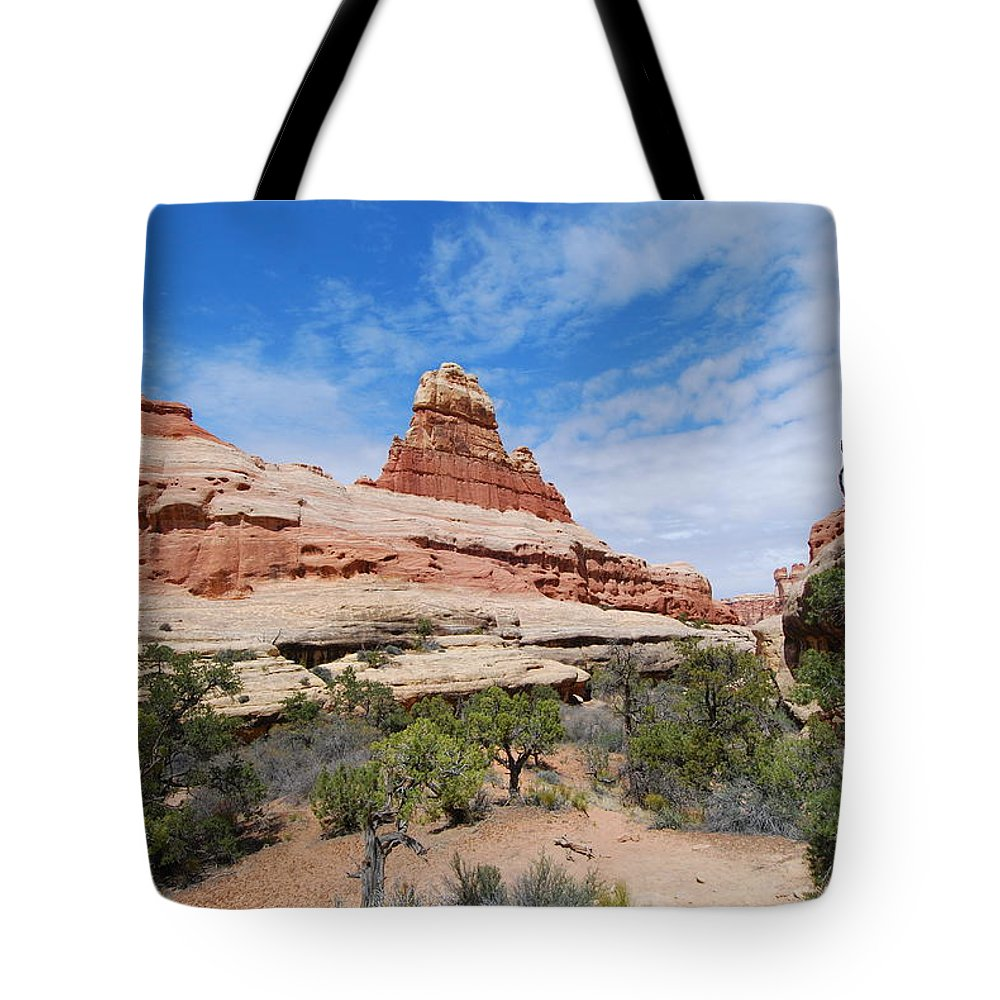 Canyonlands National Park Tote Bag featuring the photograph Canyonlands Spring Landscape by Cascade Colors
