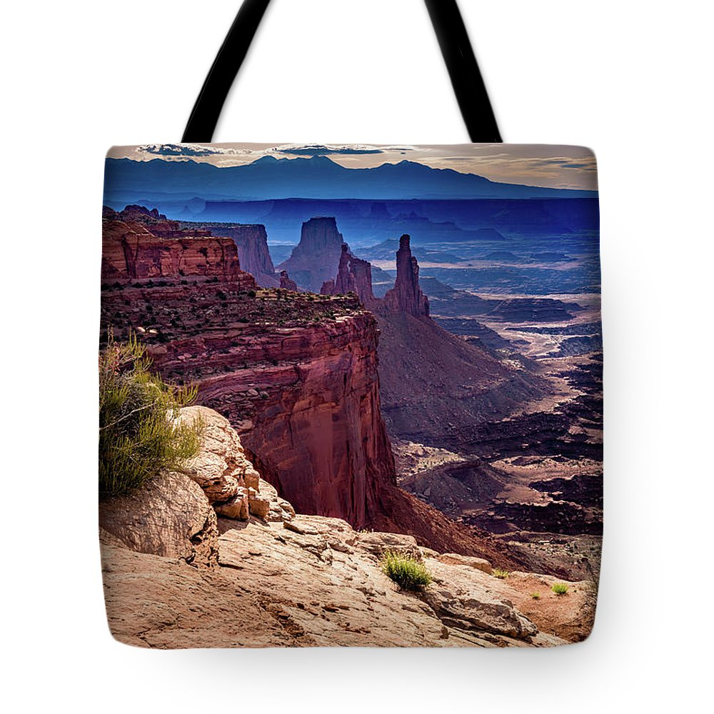 Bird Tote Bag featuring the photograph Canyonlands Vista by John Hight