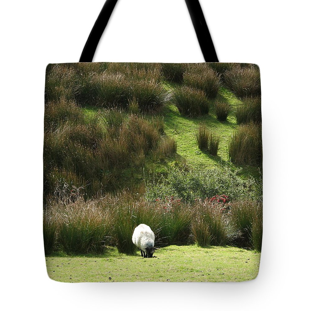 Sheep Tote Bag featuring the photograph Caora by Kelly Mezzapelle