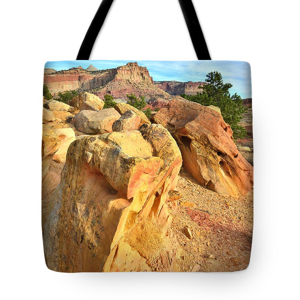 Capitol Reef National Park Tote Bag featuring the photograph Capitol Reef Boulder Art by Ray Mathis
