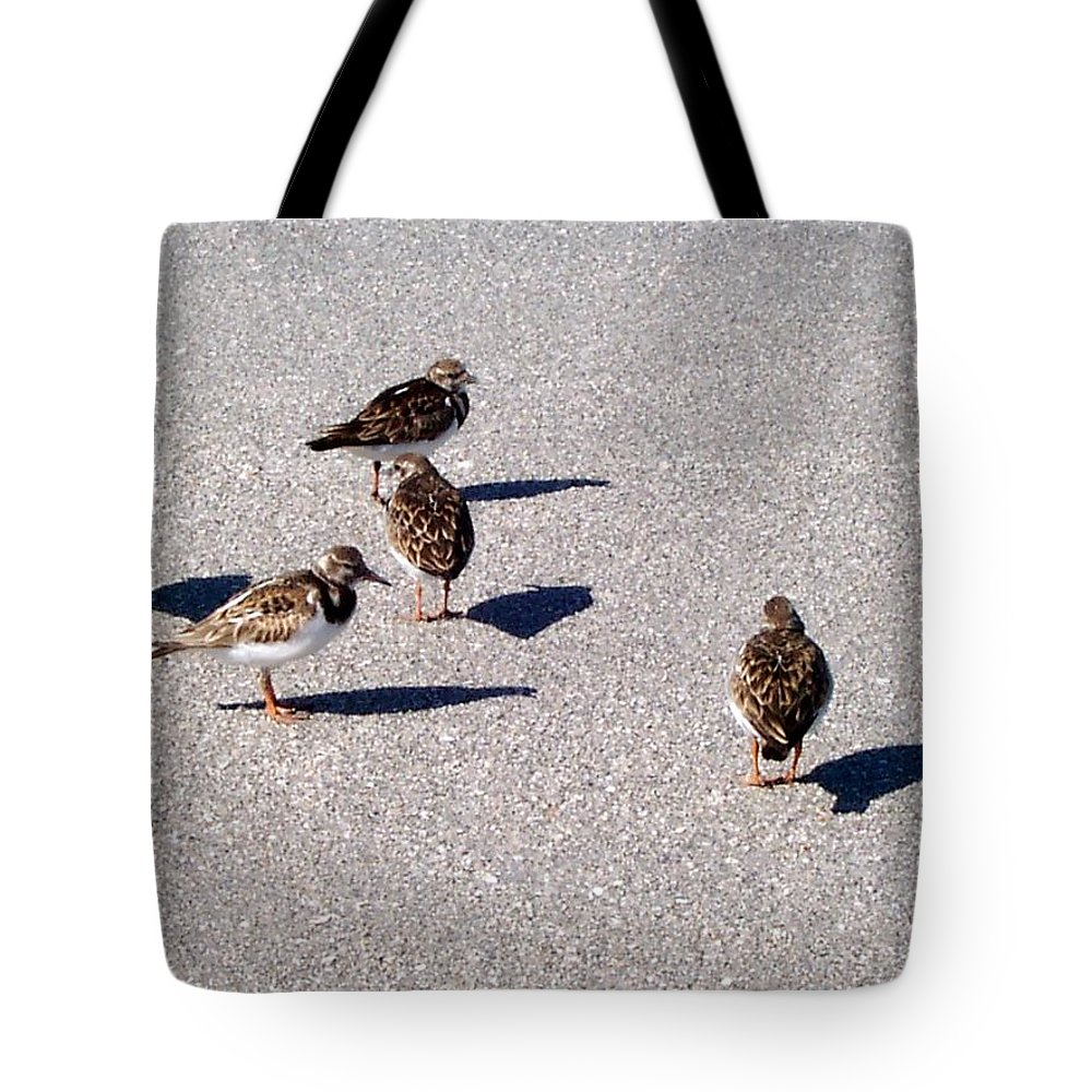 Birds Tote Bag featuring the photograph Captiva Birds 2 by Elizabeth Klecker