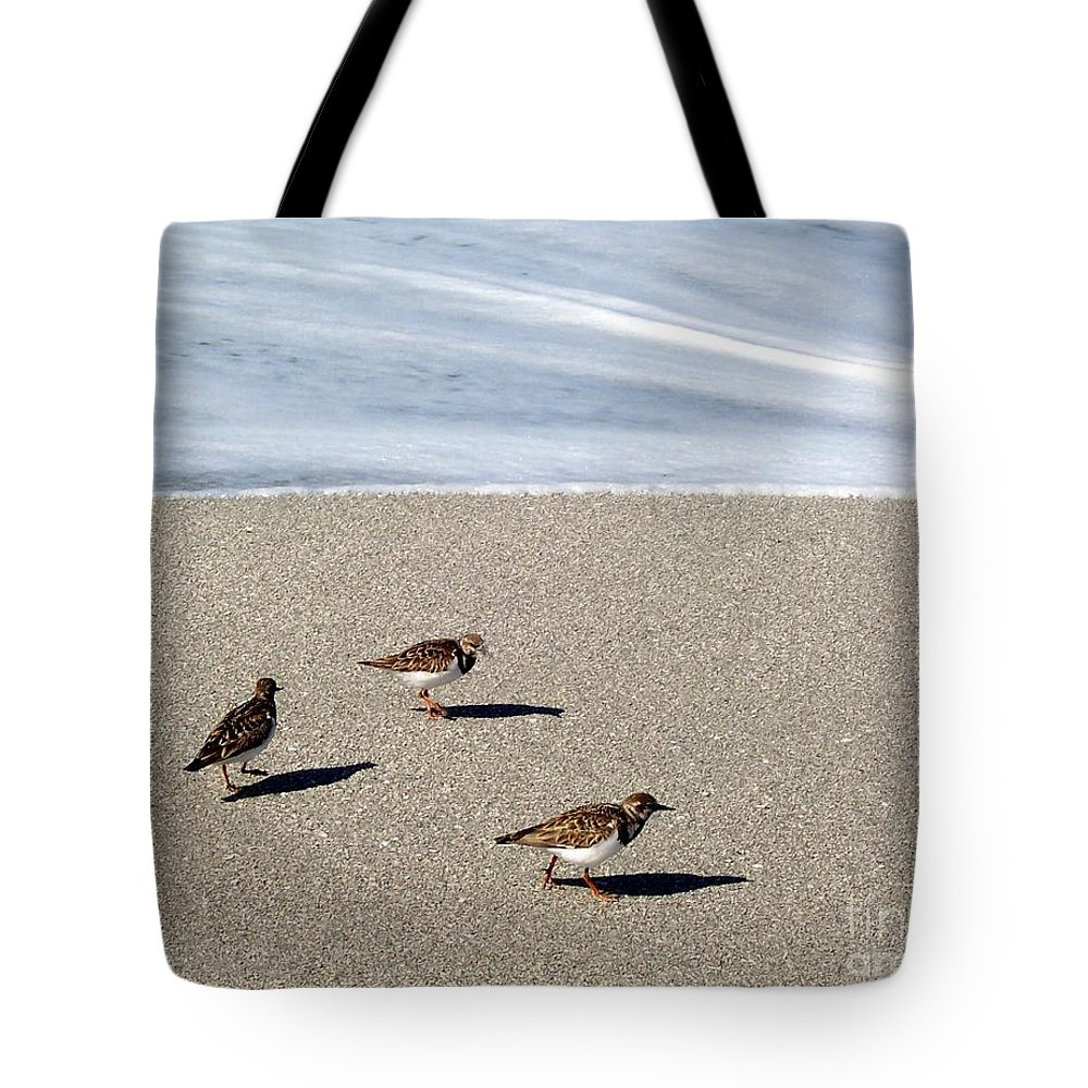 Beach Tote Bag featuring the photograph Captiva Brids by Elizabeth Klecker