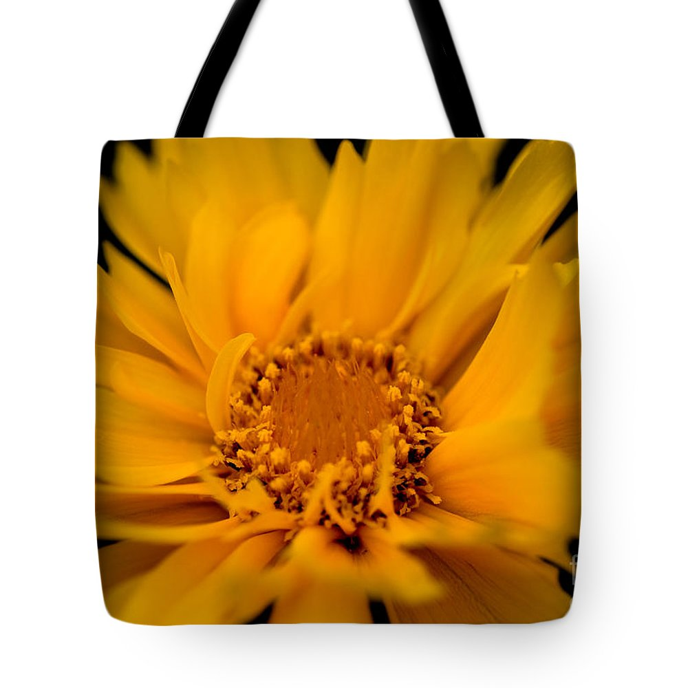 Asteraceae Family Tote Bag featuring the photograph Captivating Coreopsis by Venetta Archer