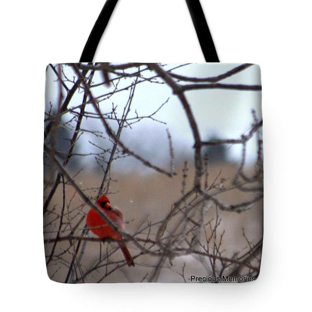 Landscape Tote Bag featuring the photograph Cardinal 2 by Karen Mayer