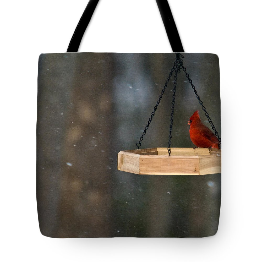 Cardinal Tote Bag featuring the photograph Cardinal Feeding In Snow by Douglas Barnett